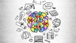 LimeUP – Les neuromythes sont parmi nous