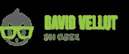 David Vellut – Logo